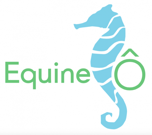 Equine02018-06-23 13.20.12.png